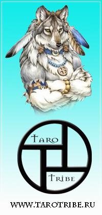 tarotribe-vk